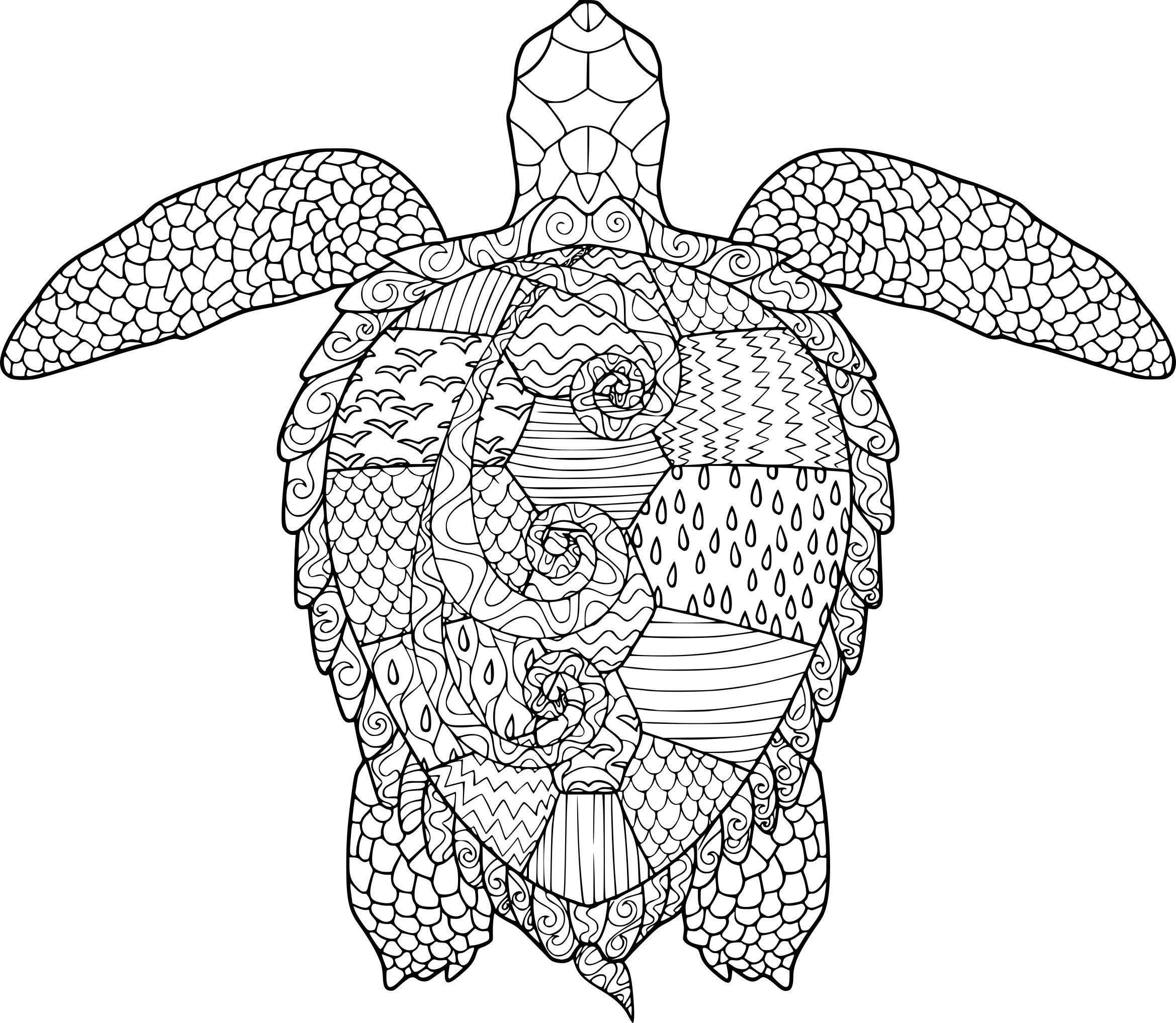 Coloriage anti stress tortue imprimer sur coloriages info mandalas turtle coloring pages - Coloriage tortue ...