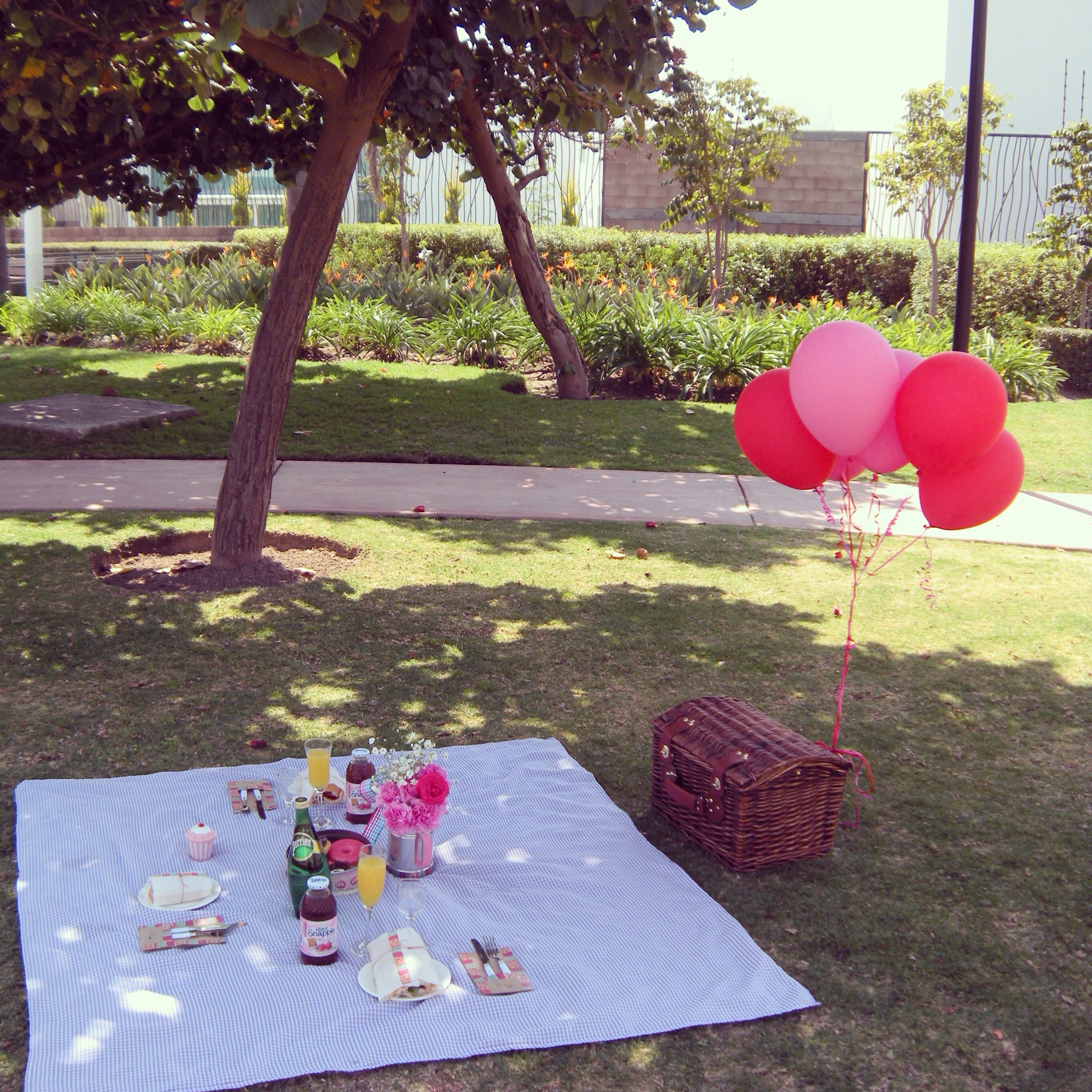 Picnic romantic picnics night picnic picnic date
