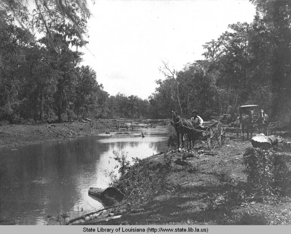 Tbt 1899 Bayou Du Lac During Drainage Improvement Project Near