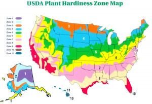 What Is My Plant Hardiness Zone Usda Climate Plant Growing Zone