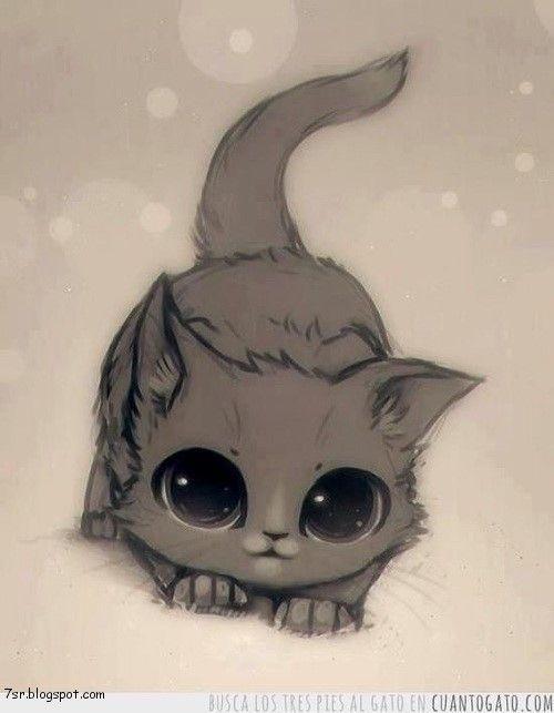 أجمل صور قطط Kitten Drawing Cute Anime Cat Cute Drawings