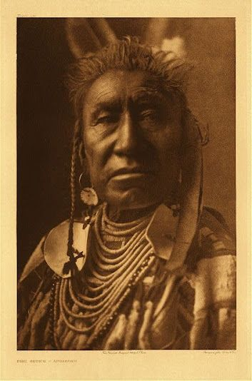 Fish Shows - Crow - 1908