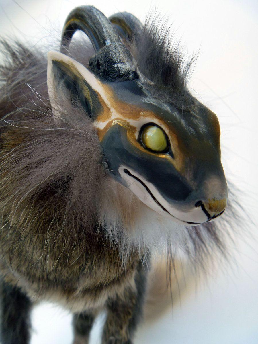 Image Result For Dragon Cat Hybrid Dragon Cat Hybrid Cat Cats