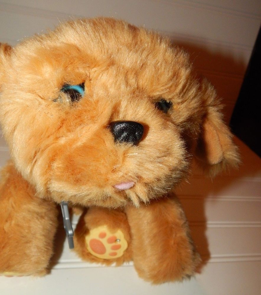 Little Live Pets Dog Snuggles My Dream Puppy Interactive Pet Plush