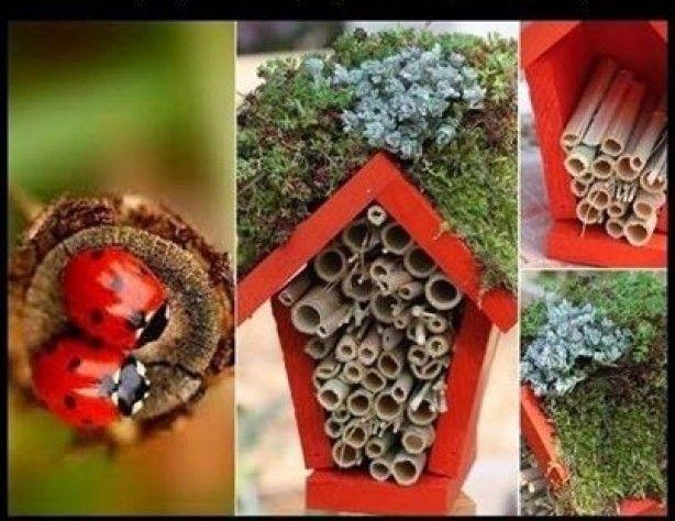 Huisje voor lieveheersbeestjes. Als je hem op een stok met puntige onderkant monteert, kun je hem overal in de grond prikken waar je luizen hebt gezien in de tuin.
