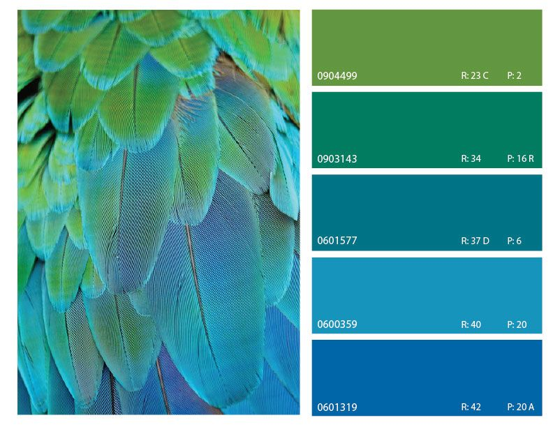green and blue color combinations | Blue color schemes ...