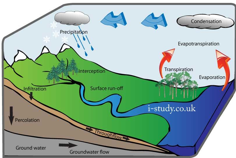 igcse geography  water cycle  hydrological cycle   useful