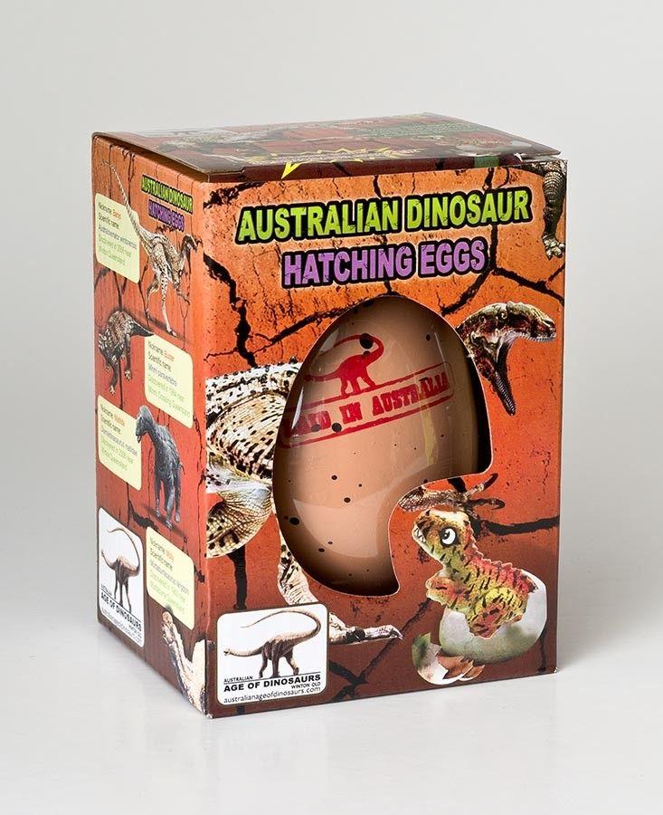 Australian dinosaur hatching egg queensland museum shop