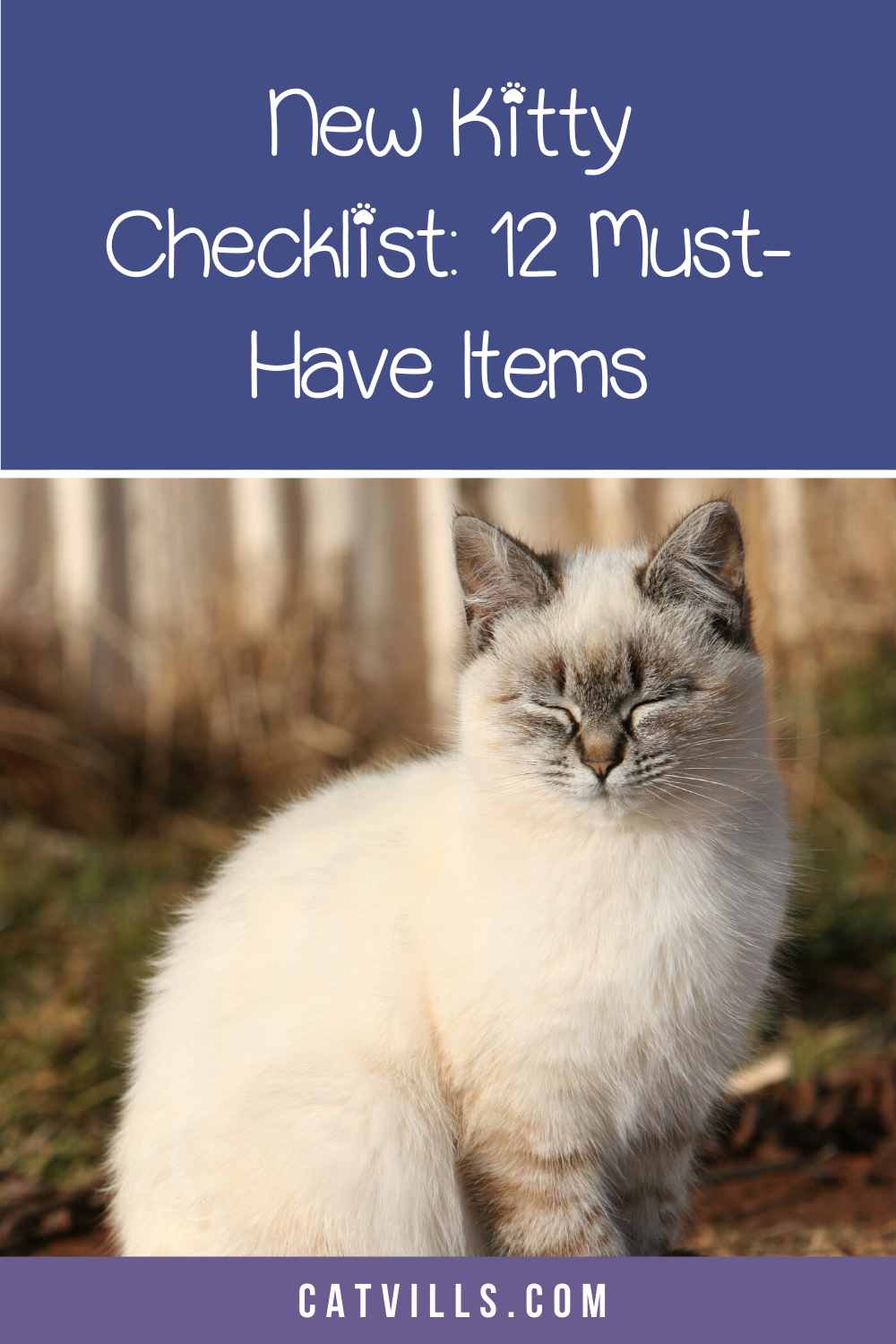 New Cat Checklist For Bringing Kitty Home In Style In 2020 Cat Checklist Cat Training Cats