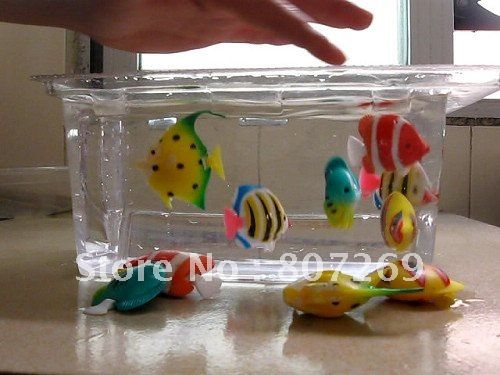 Fake Floating Fish For A Fish Tank Google Search Stuff