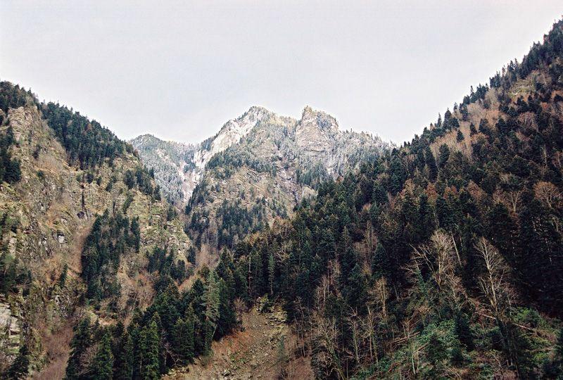 Jukavo Mountains Adventure Nature Tree