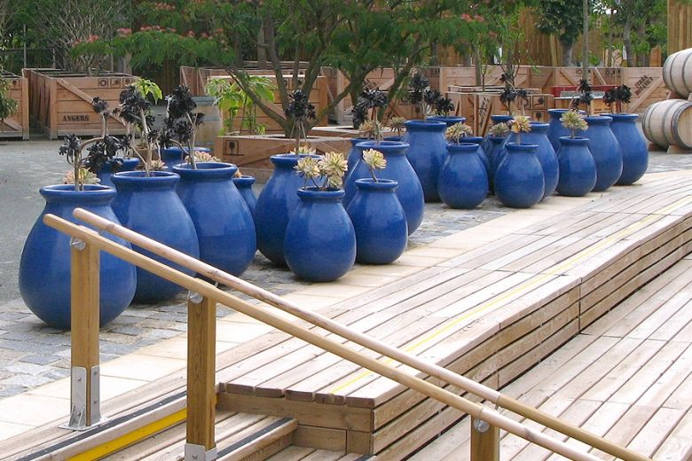 pots en terre cuite des collections ravel jarres proven ale maill es bleues inspiration. Black Bedroom Furniture Sets. Home Design Ideas
