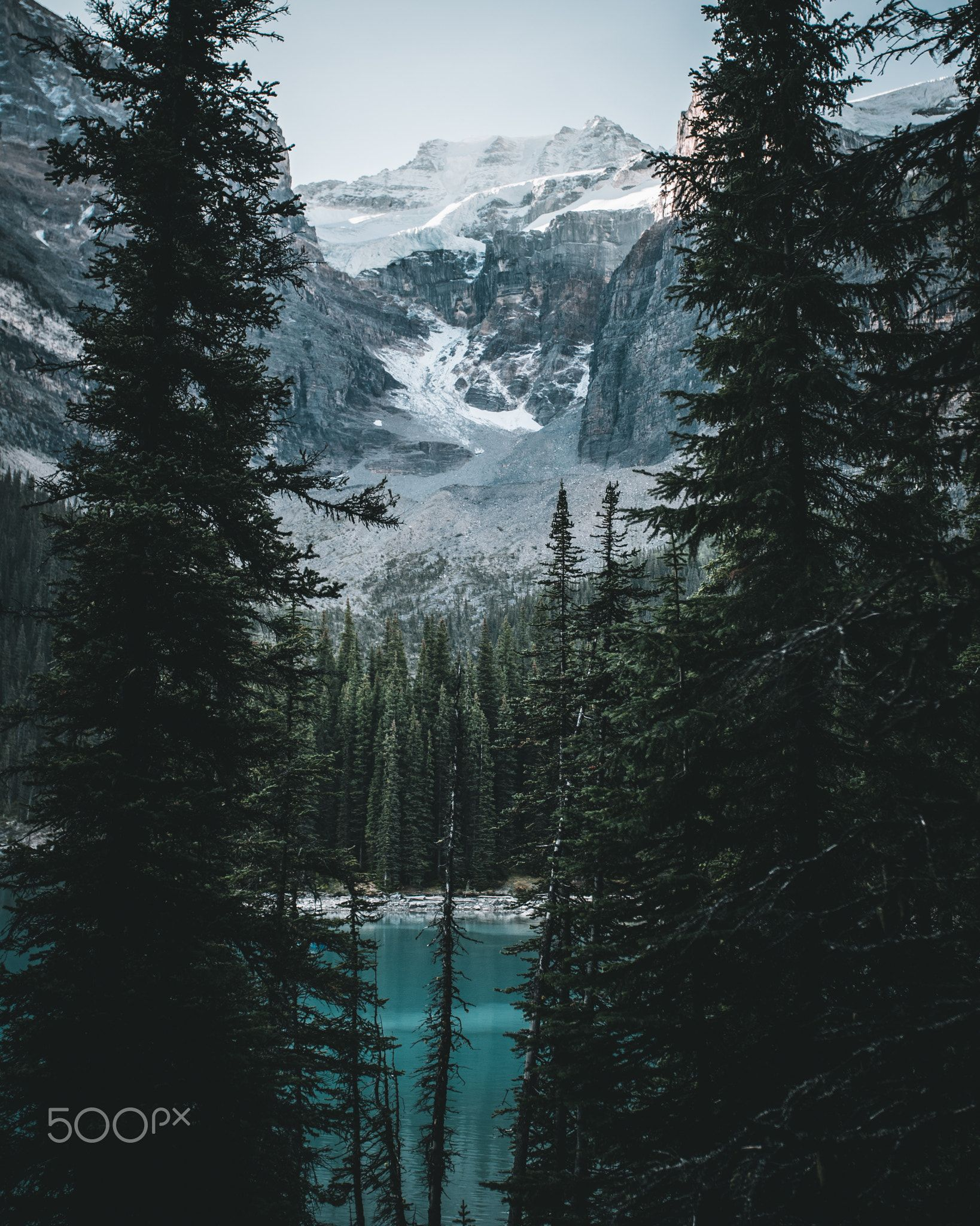 Amazing Landscape Between Rocky Mountains And Lake And Forest Landscapes Mountain Landscape Photography Fine Art Landscape Photography Landscape Photography