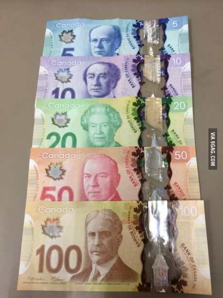 How Much Money Can You Bring To Canada