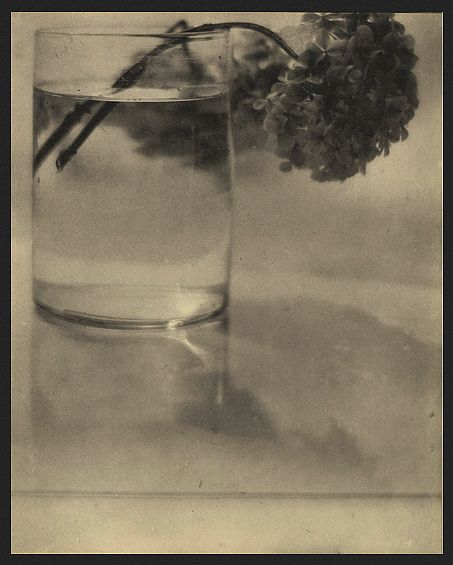 Photograph by Baron Adolph de Meyer