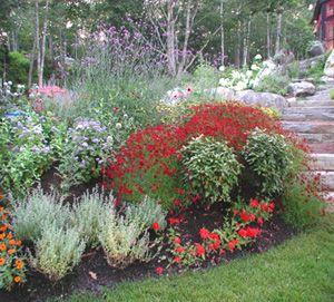 new england gardens google search
