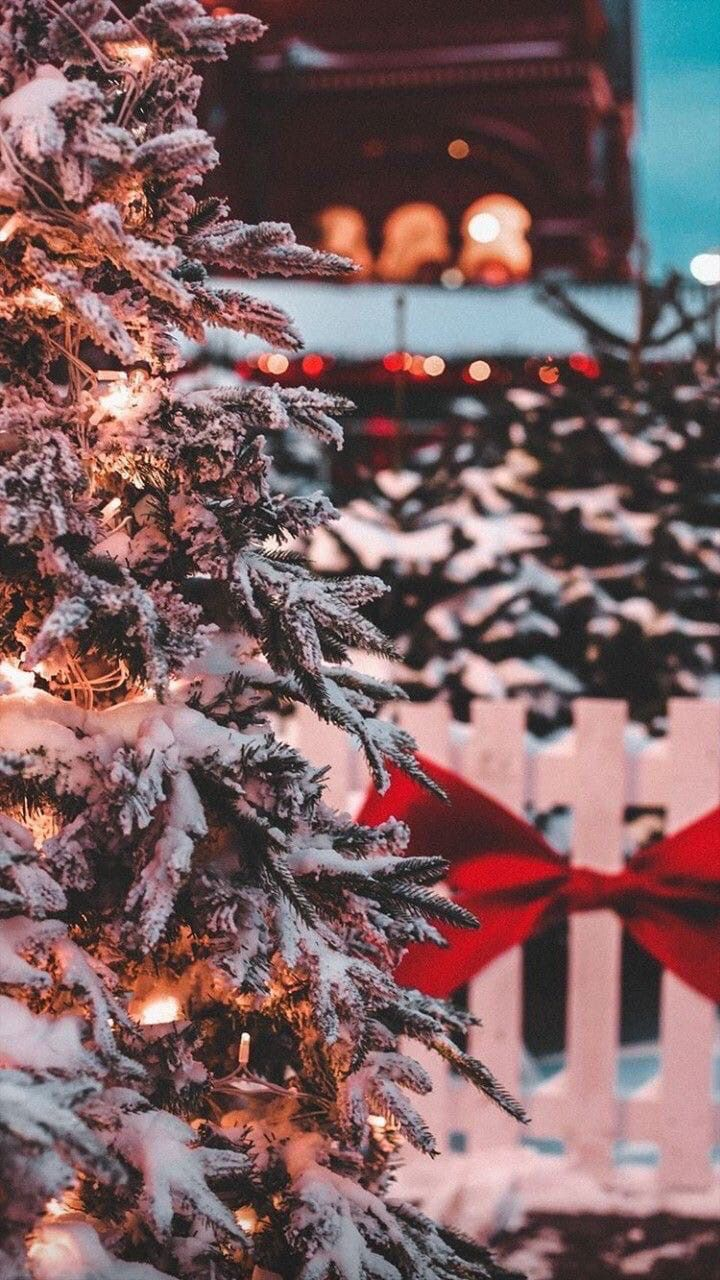 900 Navidad Ideas Y Decor All About Christmas En 2021 Decoracion Navidad Navideño Navidad