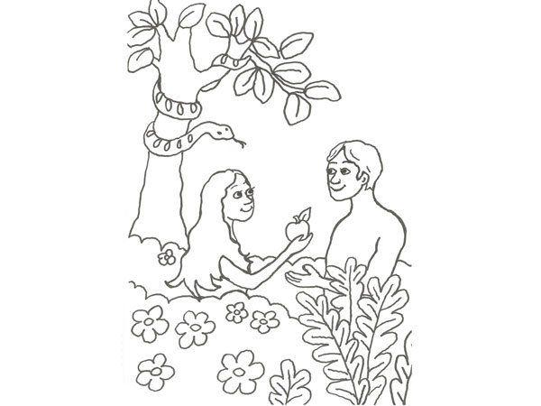 Dibujo de Adán y Eva para pintar con niños | catequesis | Bible ...