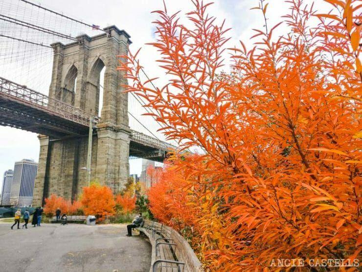 Guia Del Otono En Nueva York Festivales Tiempo Y Paseos Nueva York Puente De Brooklyn Viajes