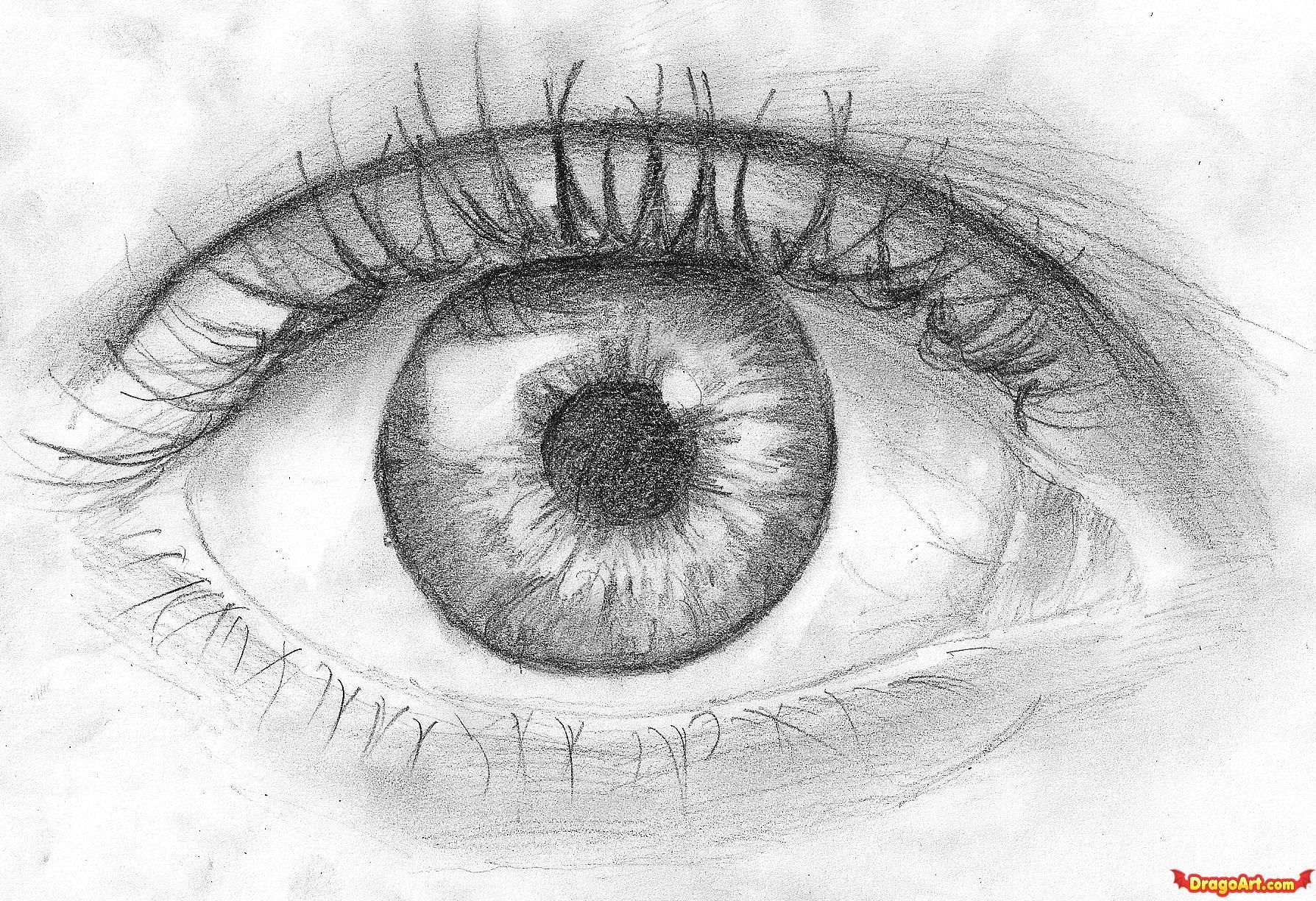 Real sketched drawings how to draw an eye in pencil step by step eyes people free online