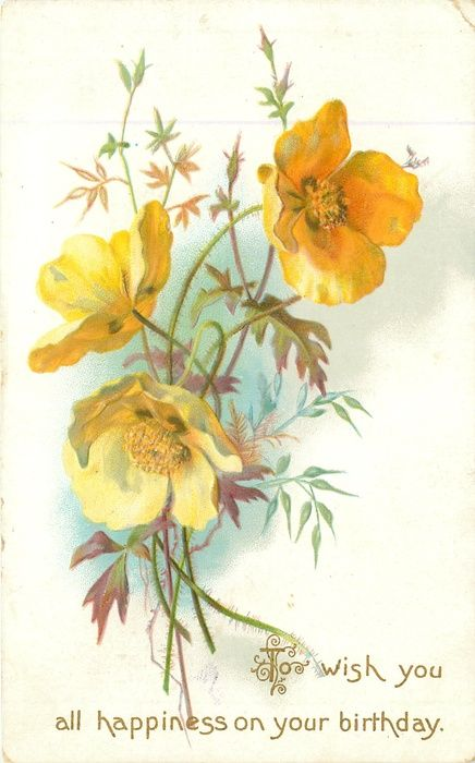 To Wish You All Happiness On Your Birthday Yellow Poppies Floral