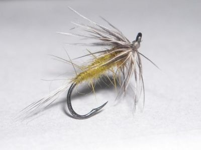 olive flymph  -hook:16 -tail:grizzly hen -abdomen:muskrat olive -torax: dark olive hare's ear -hackle:grizzly hen