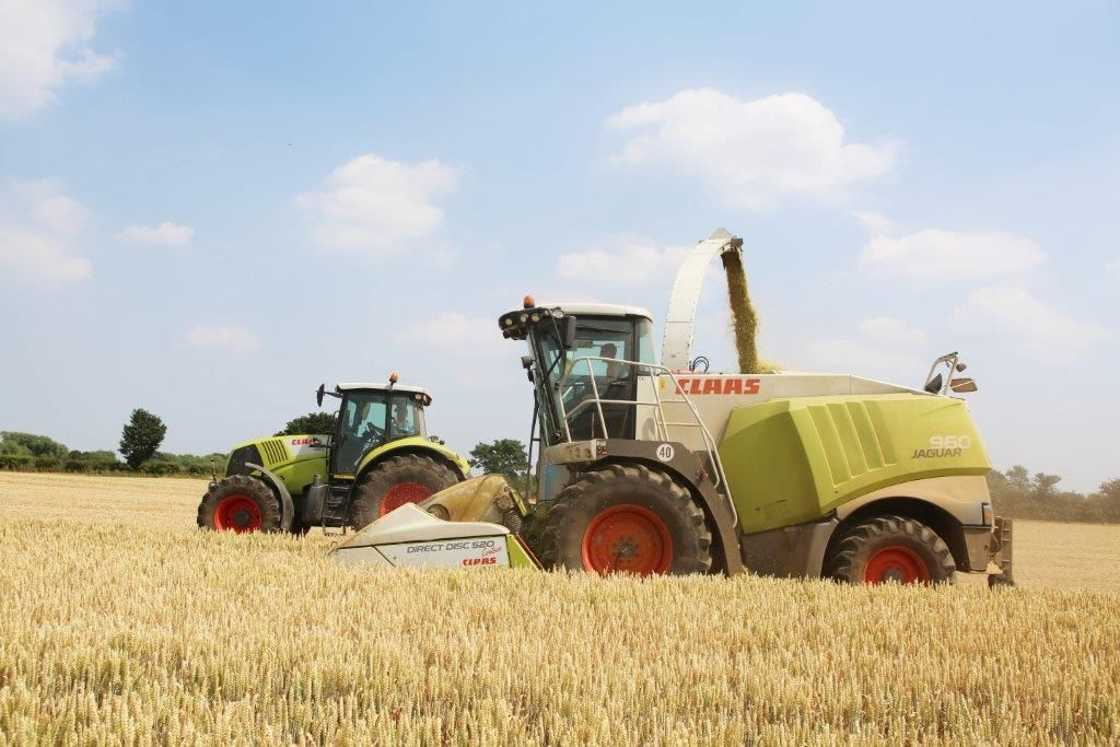CLAAS Jaguar Forager fitted with a direct cut disc header to reduce grain losses in the harvesting process.