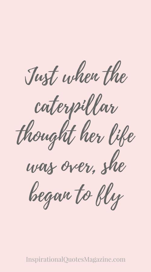 Just When The Caterpillar Thought Her Life Was Over Inspirational
