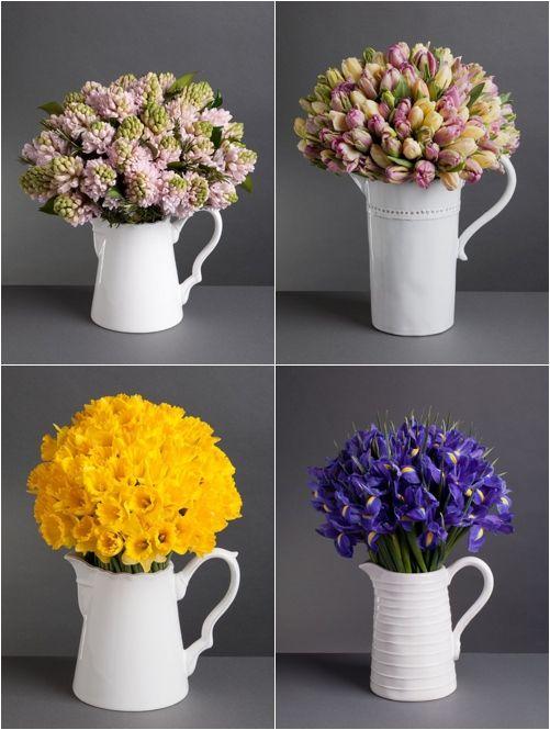 hyacinths, tulips, daffodils and irises in rustic white jugs….
