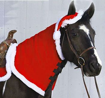 Christmas Horse Tack.Holiday Horse Neck Snuggler Chicksaddlery Com