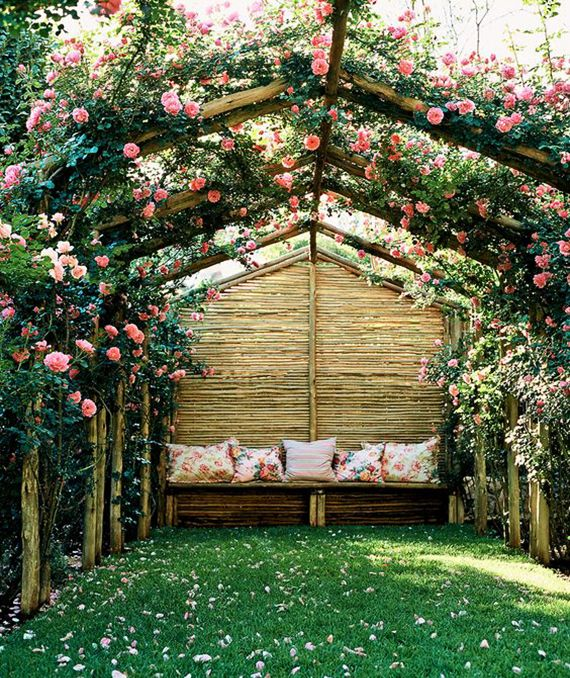 Photo of 10 Kletterpflanzen für Pergola: traumhafte Sitzplätze im Garten gestalten