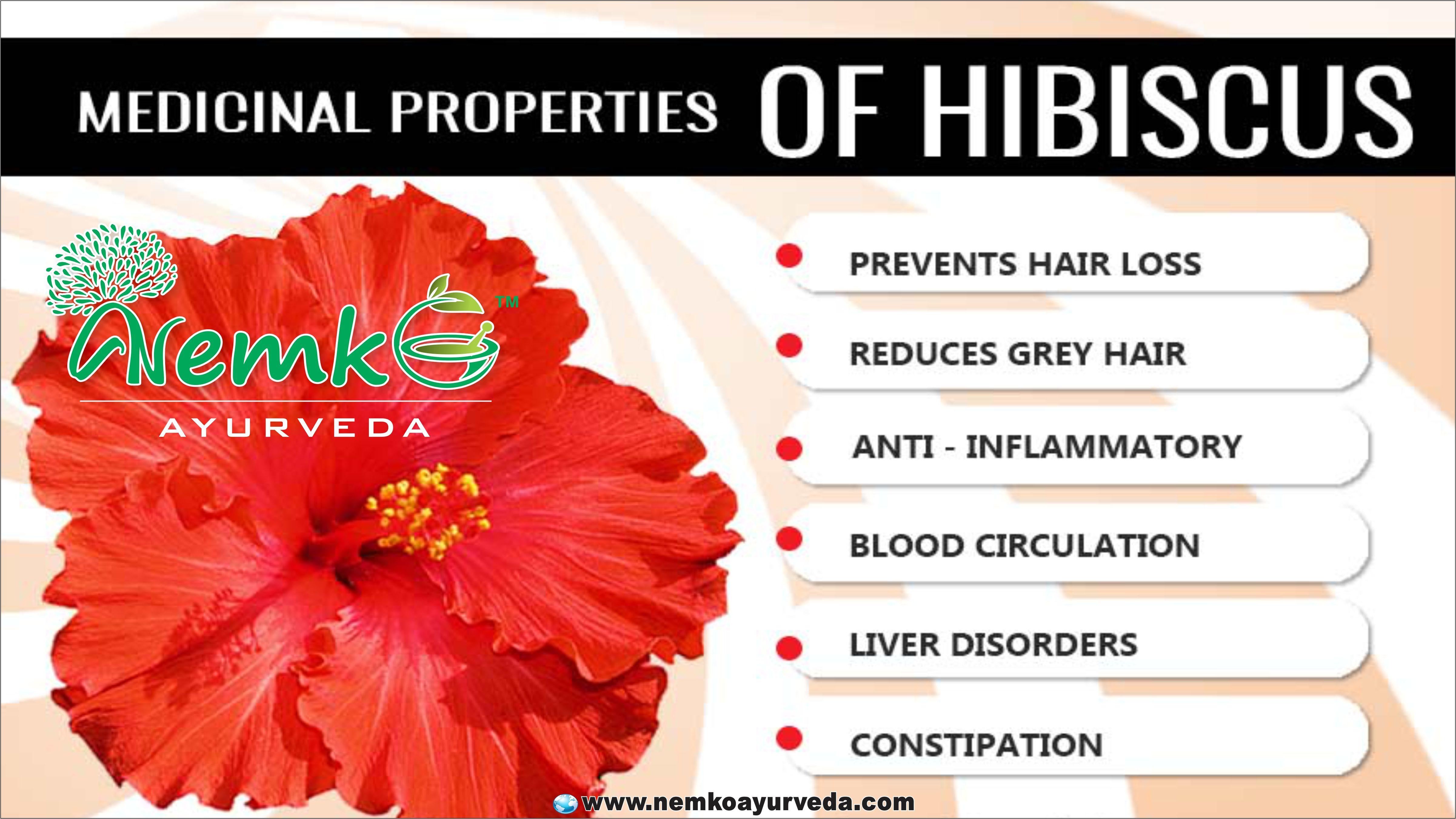 Medical Properties Of Hibiscus Benefits Of Nemko Ayurveda
