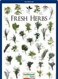 herb chart for cooking - Bing Images
