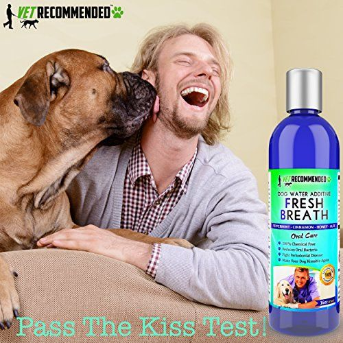 Review Vet Dog Grooming Products Dog dental
