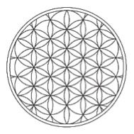 """Sacred Geometry: The Flower of Life -- """"Would you ever guess that the flower of life image is the blueprint for all of creation; that contained within this pattern is literally everything; all laws of physics, all biological life forms; including all of us?"""" Bob Frissell, author of Nothing in This Book is True, But It's Exactly How Things Are"""
