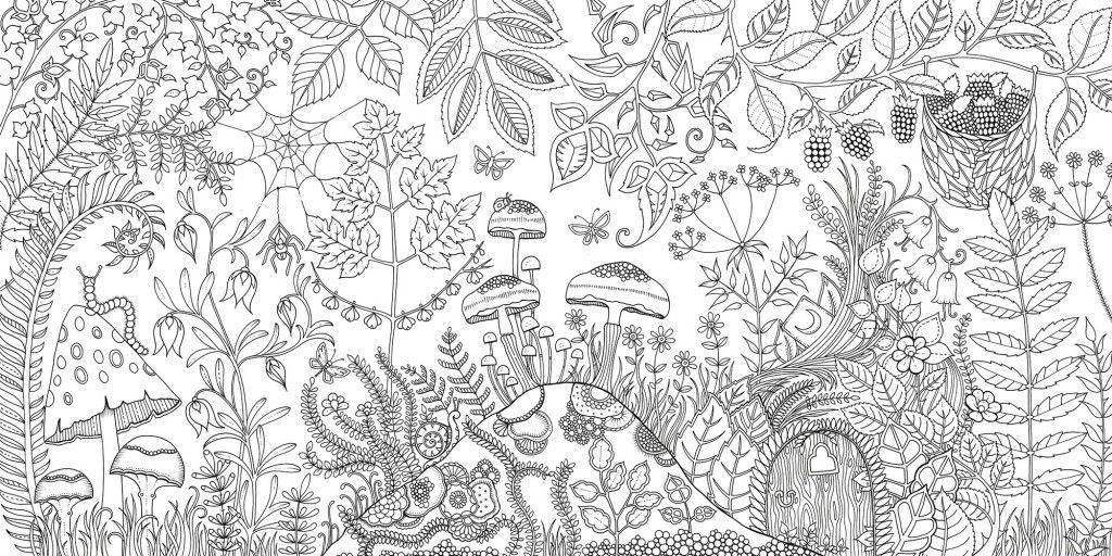 Floresta Encantada Lindo Jardim Adult Coloring Pages Floresta