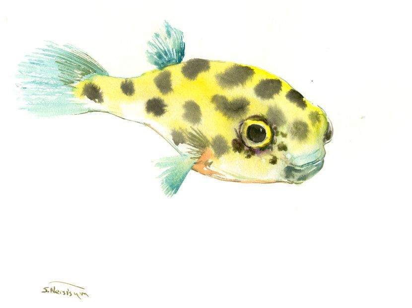 Cute Baby Fish Art Yellow Boxfish Original Watercolor Painting