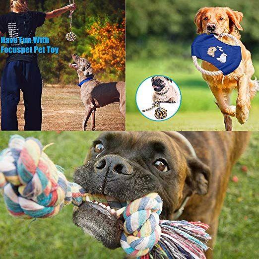 Hund Seil Spielzeug Welpen Spielzeug Set Haustier