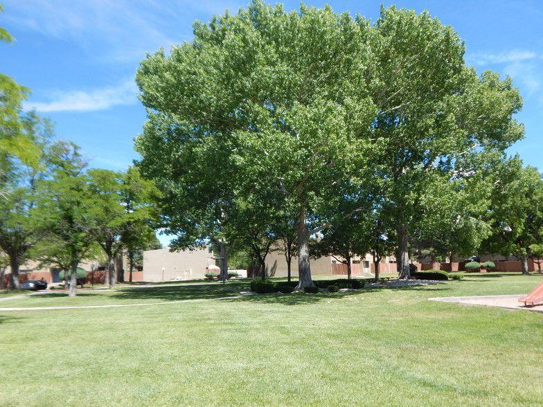 Sun Plaza Free Utilities Apartments Albuquerque Nm Apartments Com In 2021 Plaza Albuquerque Apartment
