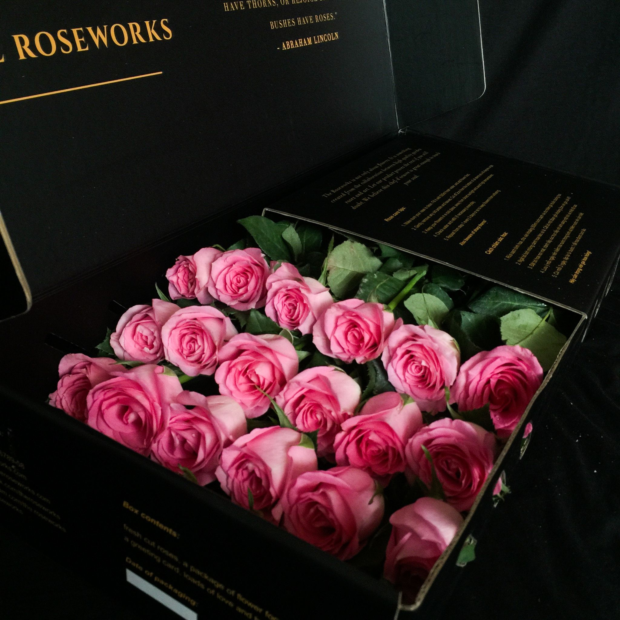 Ghim trên Random things from The Roseworks