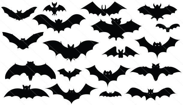 Bats Silhouette Vector Download Bat Vectors Bat Silhouette Silhouette Clip Art Silhouette Vector