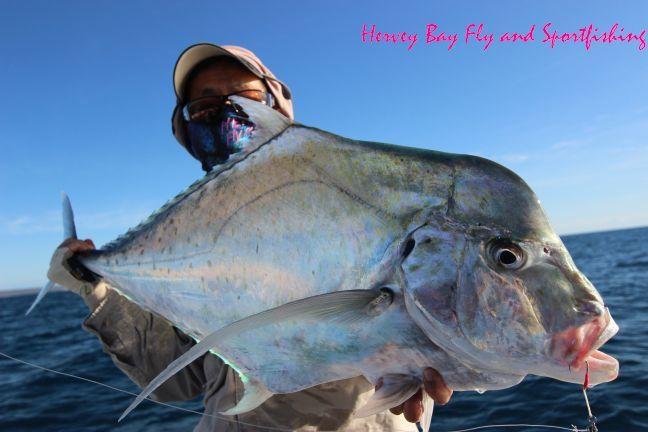 Hervey Bay Fly and Sport Fishing |Hervey Bay Fishing Charters| Fly Fishing Hervey Bay | Sport Fishing Hervey Bay | Fraser Coast Sport Fishin...