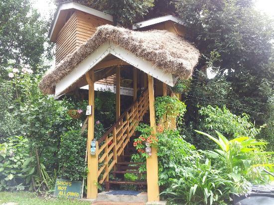 10 extraordinarios hoteles en árboles