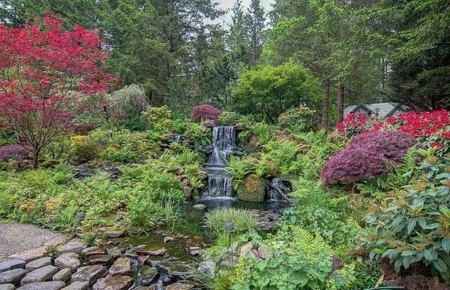 Garten-Oase mit bunter Bepflanzung-Abstufung der Wuchshöhe - bilder gartenteiche mit bachlauf