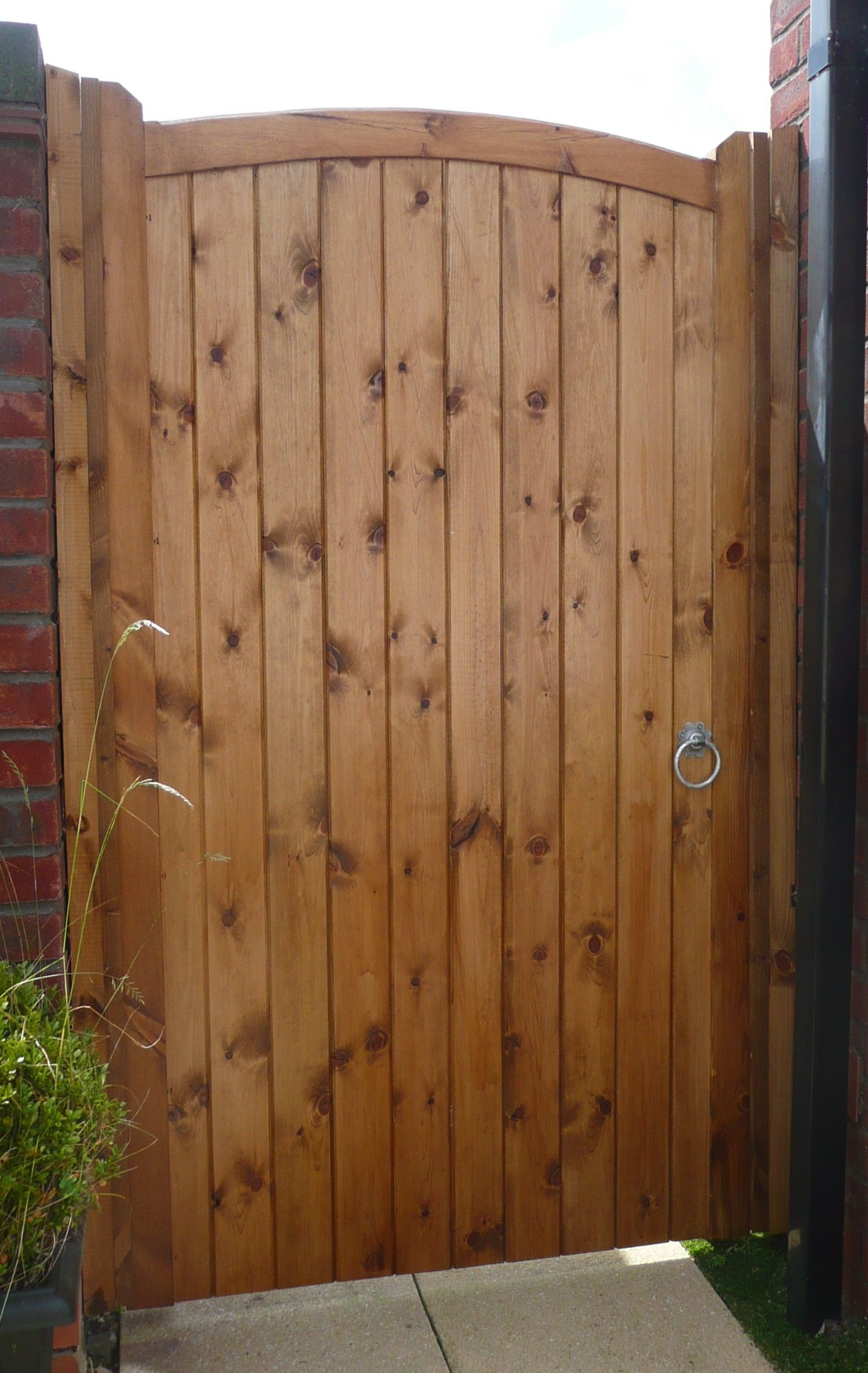 Softwood single gate garden pinterest gate electric driveway