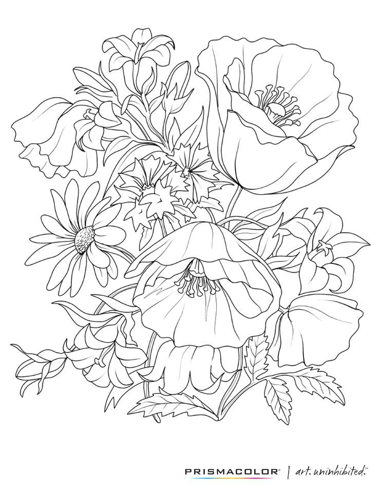 What a beautiful flower adult coloring page  http