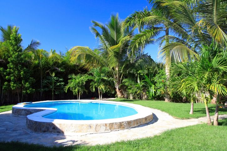 101 swimming pool designs and types photos plunge pool for Pool design 101