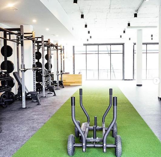 Tank Sled Zone In 2021 Gym Design Commercial Gym Design Gym Design Interior