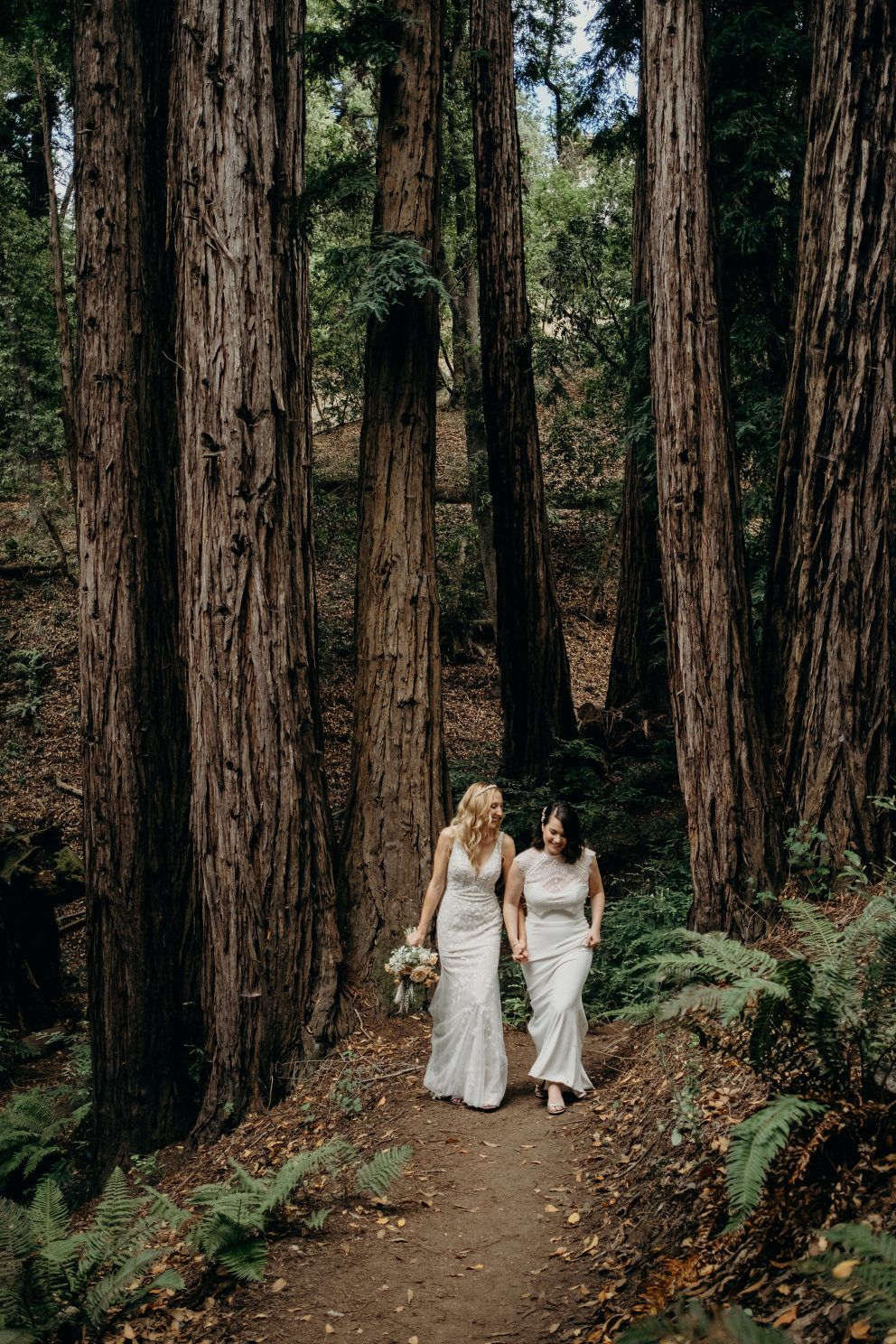 Best Redwood Forest Wedding Venues in California | Redwood ...