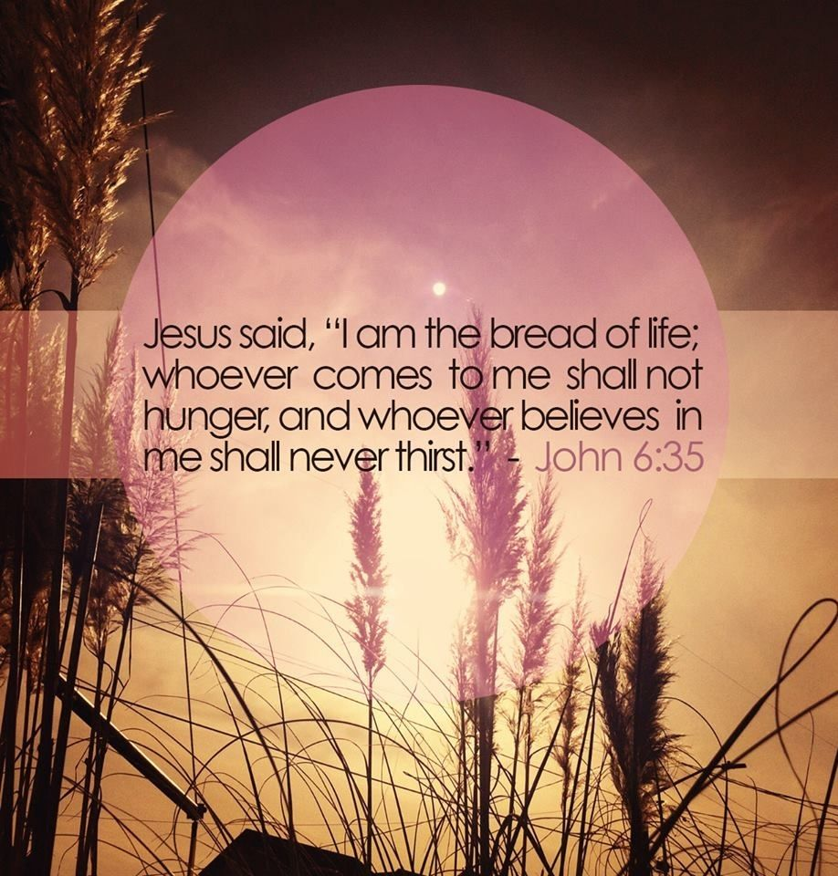 Quotes Of Jesus In The Bible: Bread Of Life Quotes Jesus Faith Bible Christian
